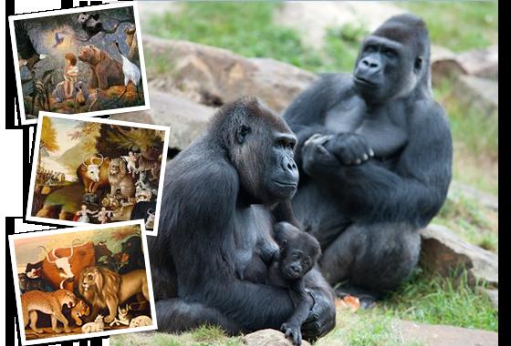 photo of Silverback gorilla with mother gorilla holding baby gorilla