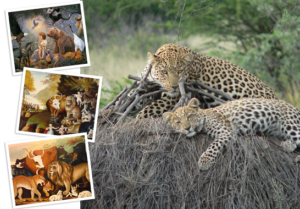 photo of adult leopard and cub resting on African plain